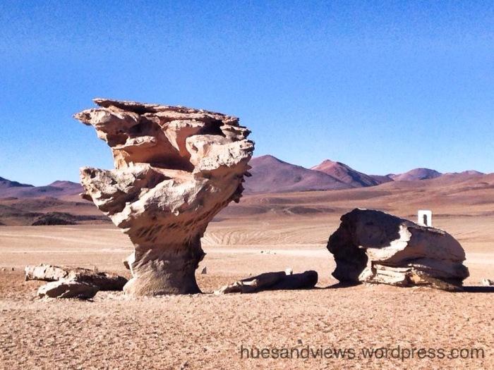 abiola de pedra Bolivia