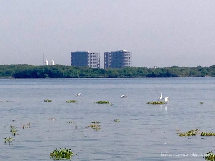 crane in kochi port