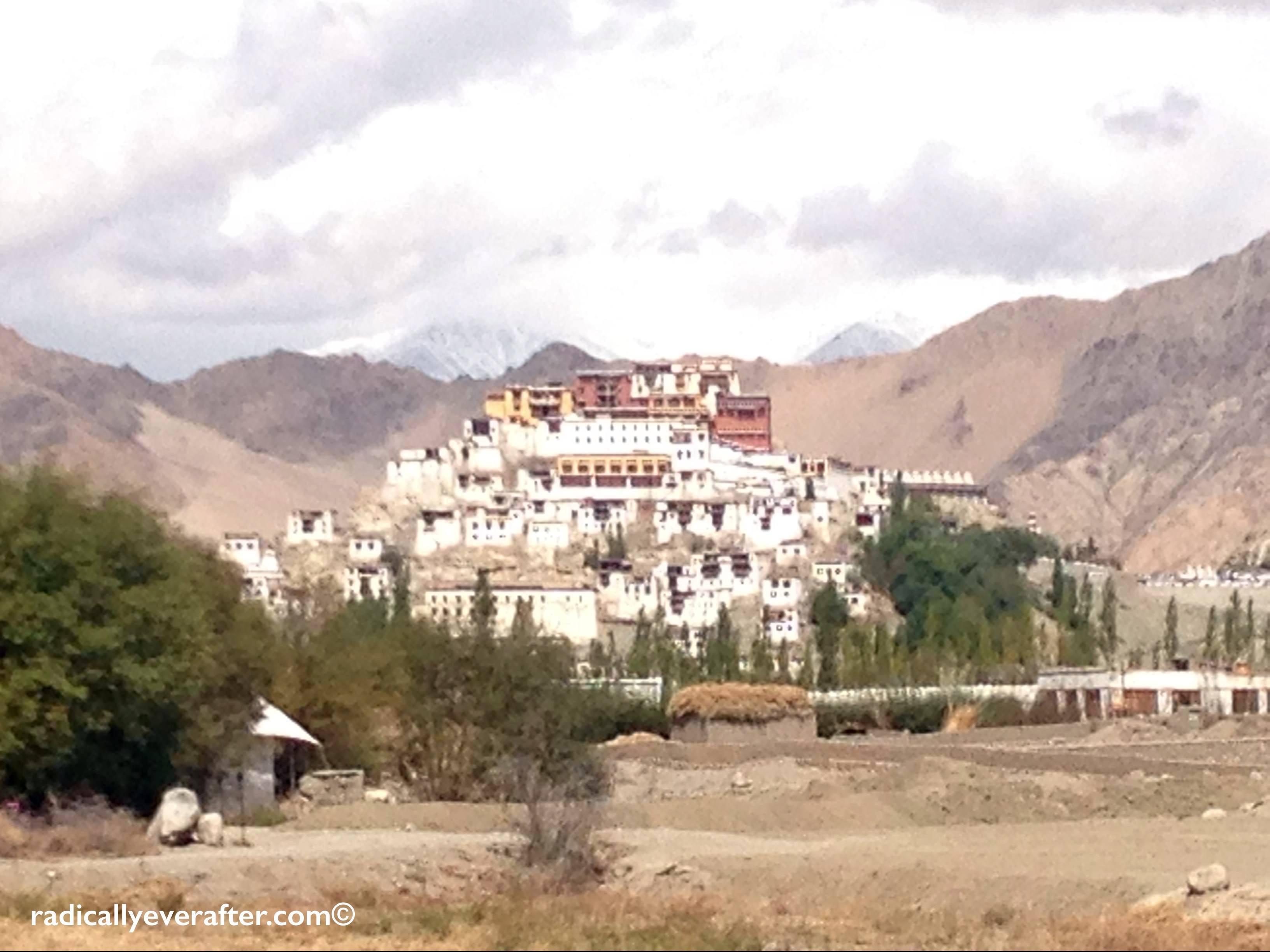 Thiksey, Ladakh, Leh, monastery, Himalayas, glamping, TUTC